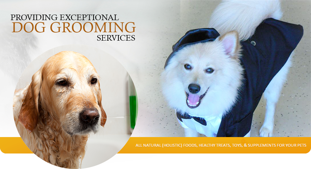 Happy dog wash welcome to happy dog wash solutioingenieria Choice Image